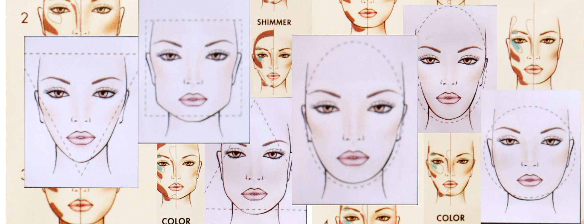face morphology