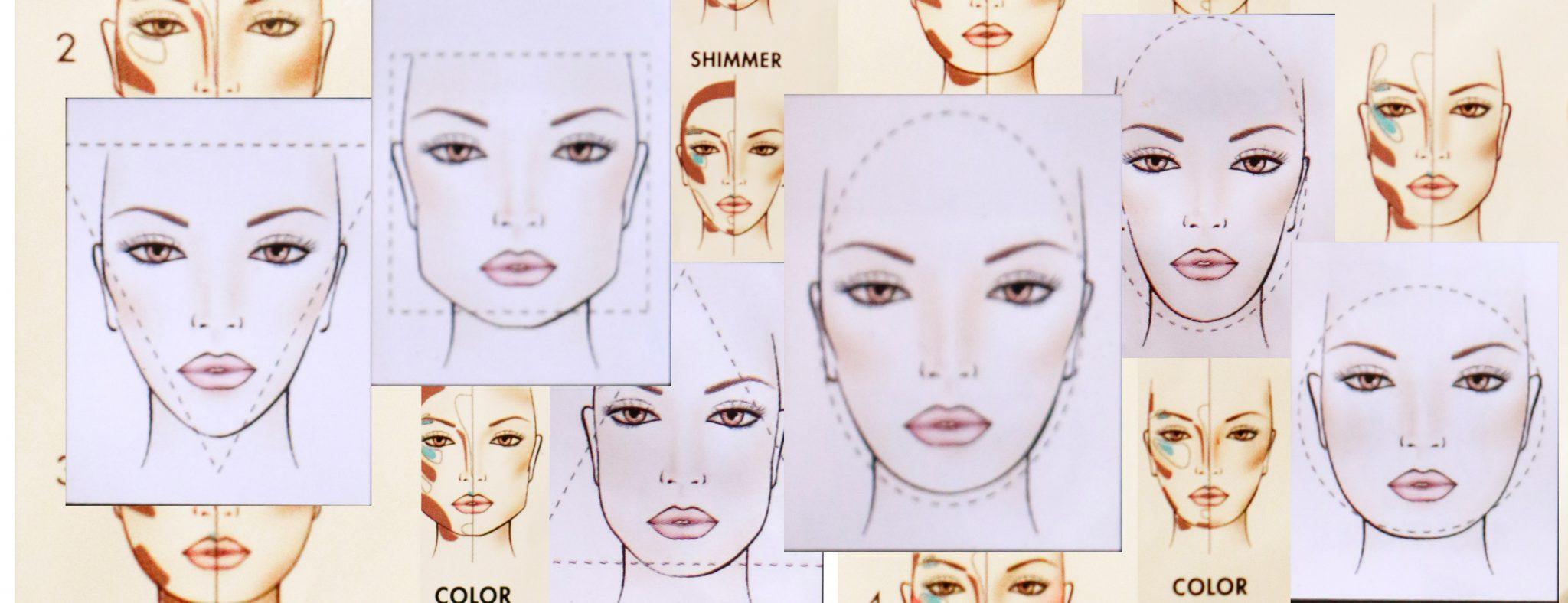 face morphology